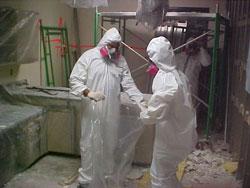 asbestos-removal-services